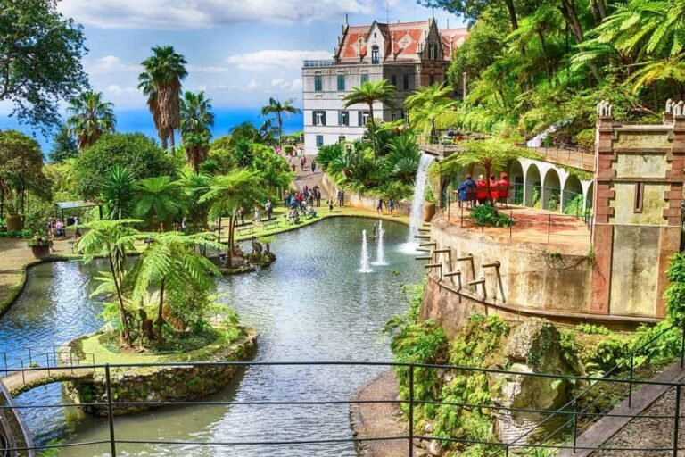 Madeira Living