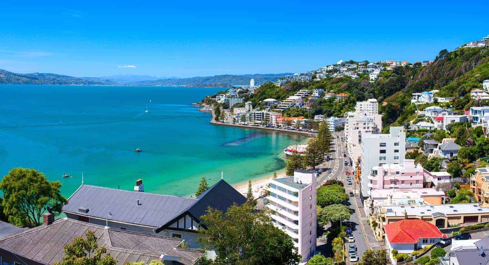 New Zealand visa application