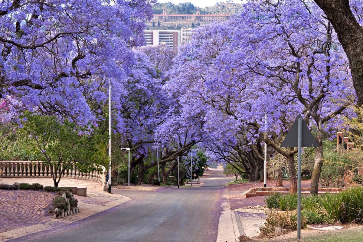 Best countries for the quality of life - South Africa