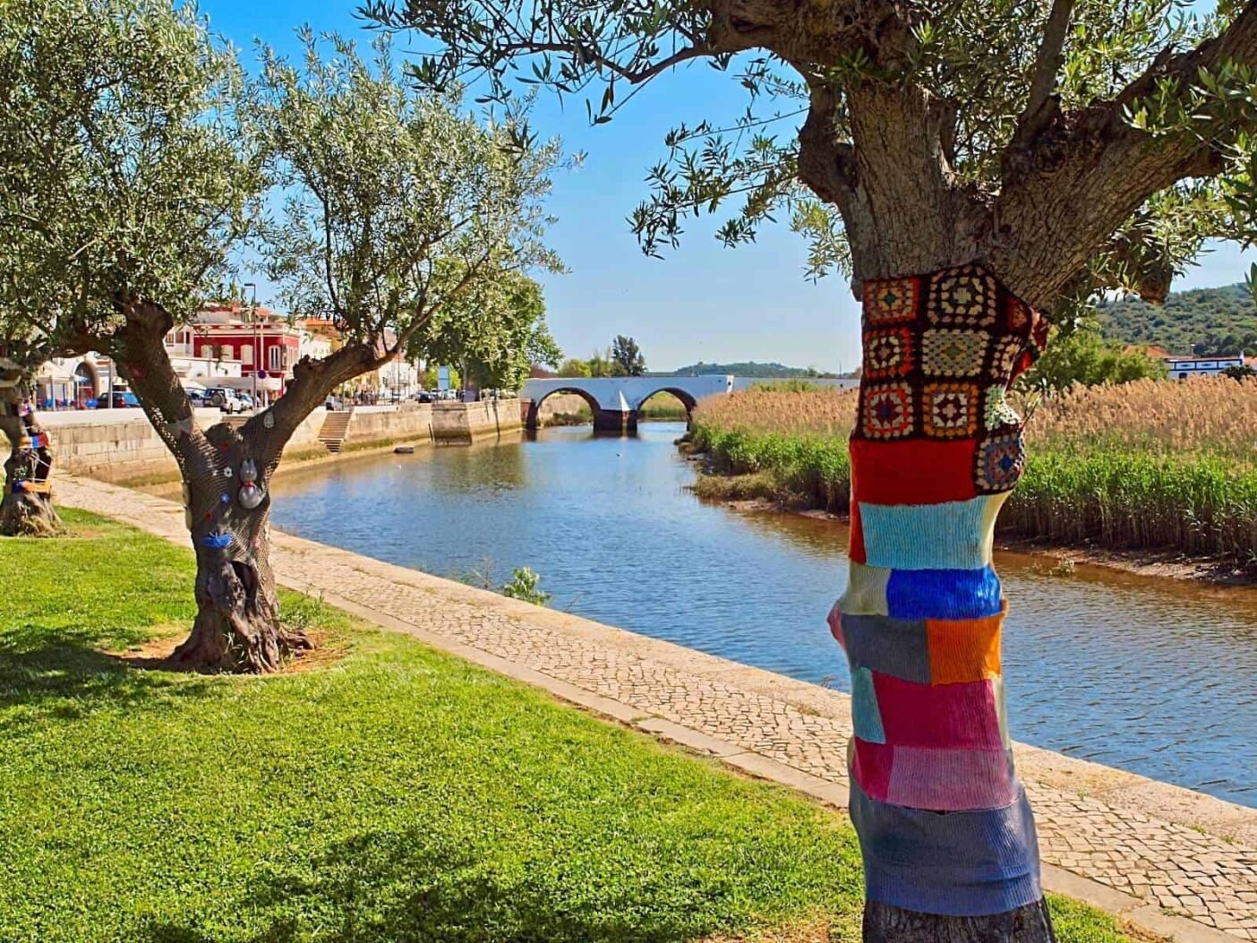 Trees alomg the river in Silves, Portugal, with trunks covered in colourefull croshet