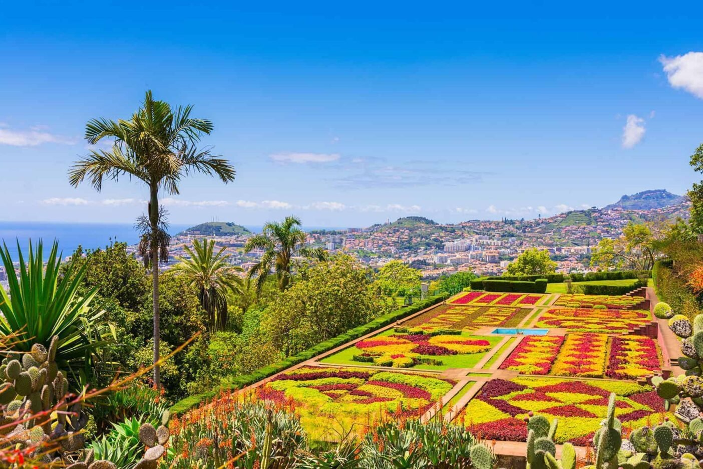 Colourful flowers and flower beds of gardens in Funcgal, Portugal