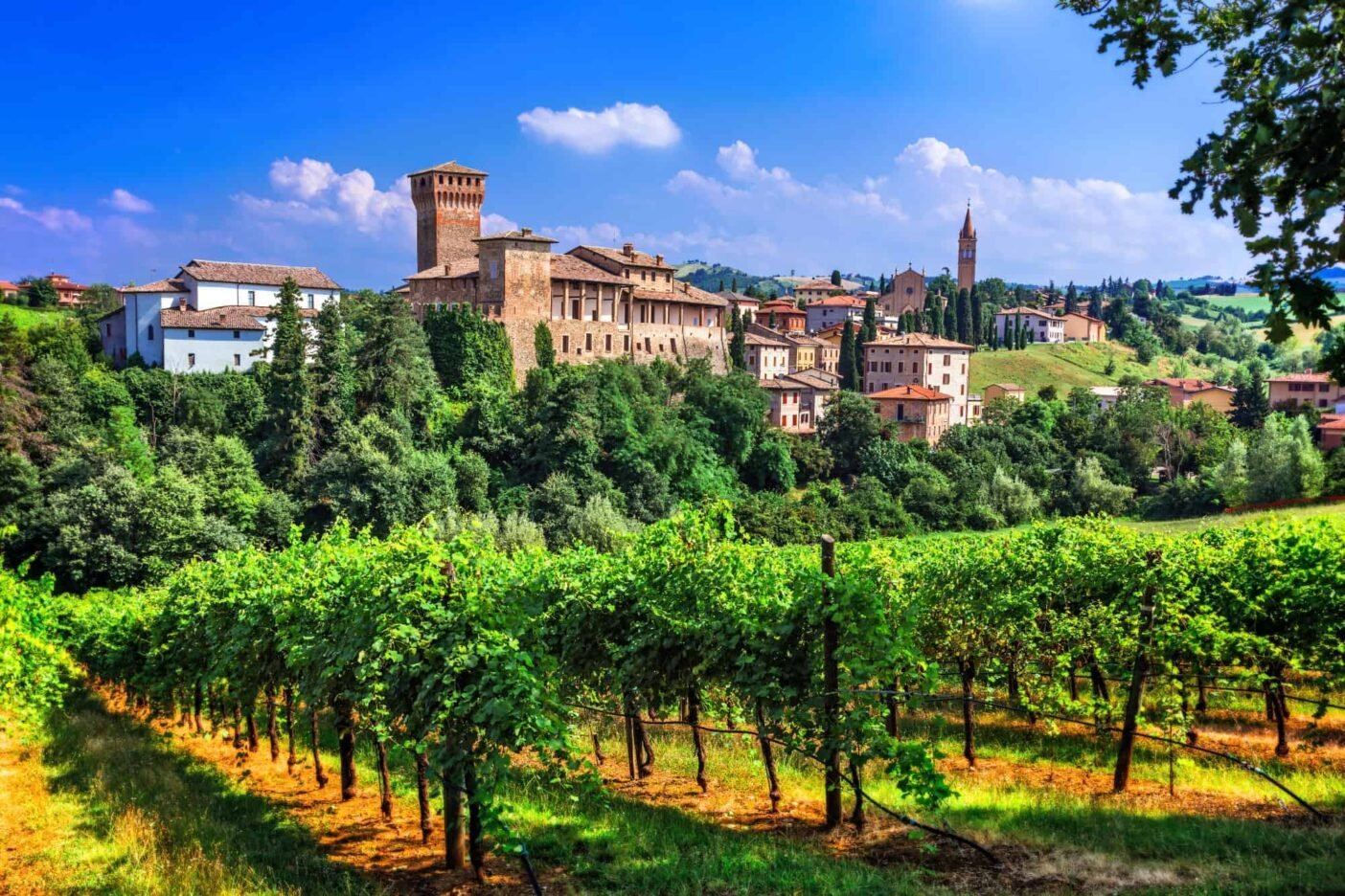 Living in Italy - wine