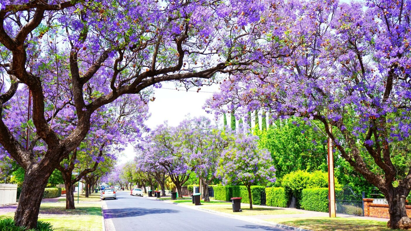 Best places to live in Australia - Adelaide